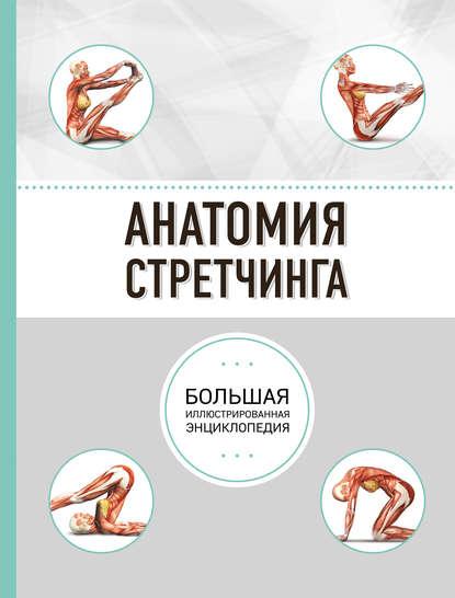 Анатомия стретчинга