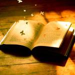 Краткое содержания - плюсы и минусы